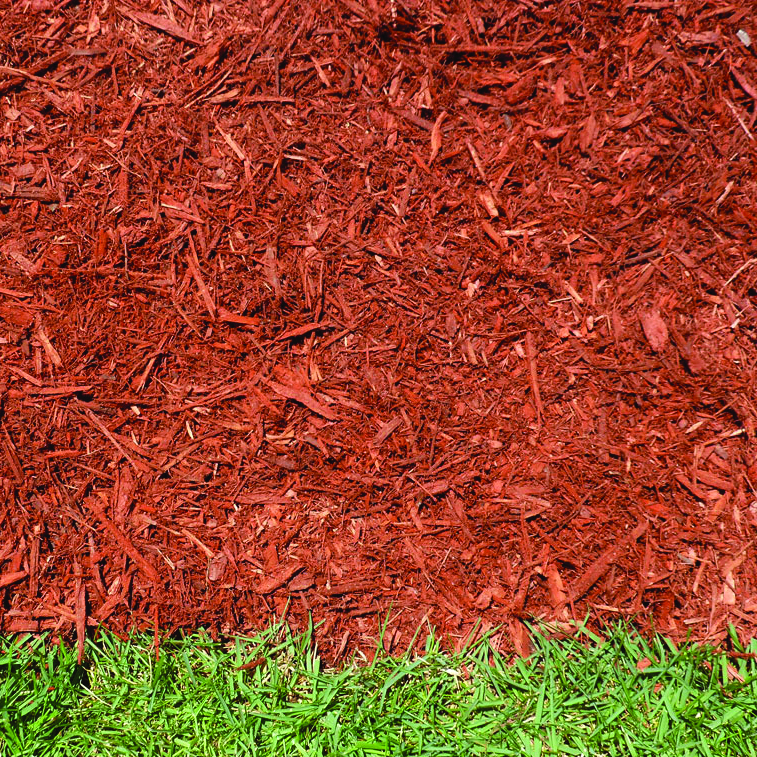 Red shredded hardwood mulch in contrast to the green grass.